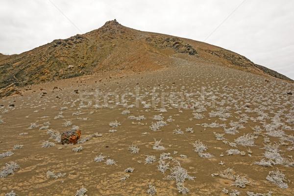 Vulkanisch landschap afstandsbediening eiland vulkaan natuurlijke Stockfoto © wildnerdpix