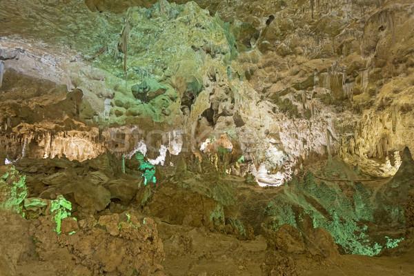 пещера освещение большой комнату большой фары Сток-фото © wildnerdpix