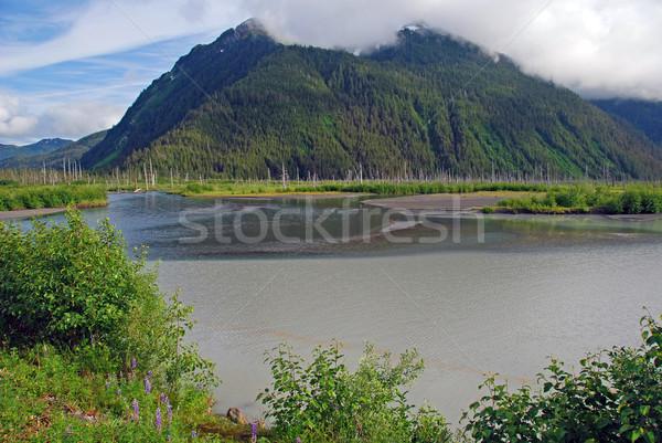 Montanhas cobre rio delta Foto stock © wildnerdpix