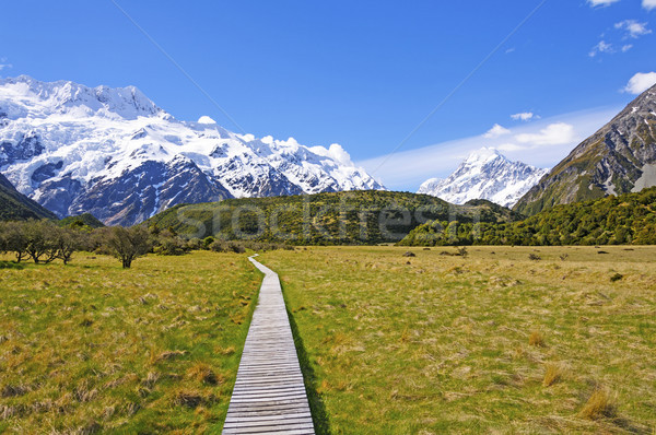 Camino alpino mundo maravilloso Nueva Zelandia paisaje nieve Foto stock © wildnerdpix