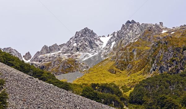 Jagged Peaks with Fresh Snow Stock photo © wildnerdpix