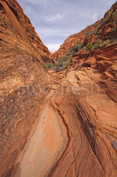 Keskeny kanyon sivatag hó park Utah Stock fotó © wildnerdpix