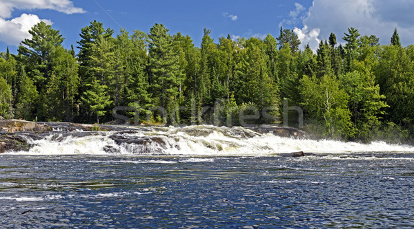 North Country Waterfall on a Sunny Day Stock photo © wildnerdpix