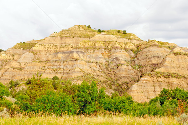 Badlands Hill on a cloudy day Stock photo © wildnerdpix