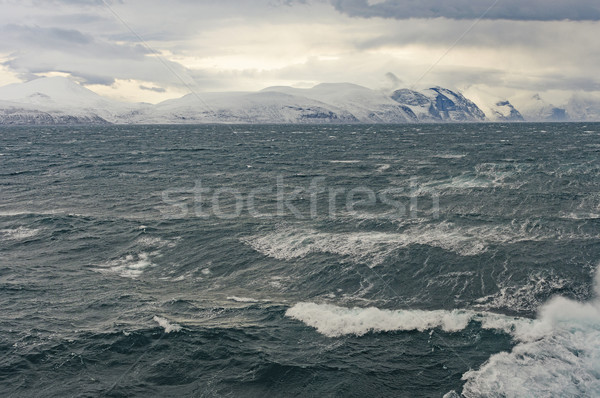 Heavy Seas in a High Aarctic Fjord Stock photo © wildnerdpix