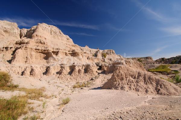 Desert Canyon in the Badlands Stock photo © wildnerdpix