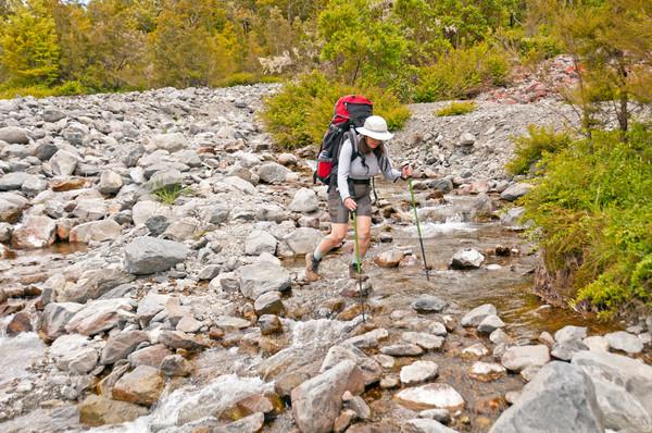 Rock Hopping a Wilderness Creek Stock photo © wildnerdpix