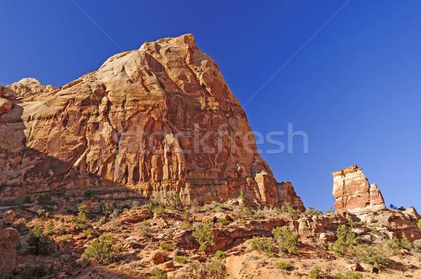 Homokkő kupola sivatag park Utah természet Stock fotó © wildnerdpix