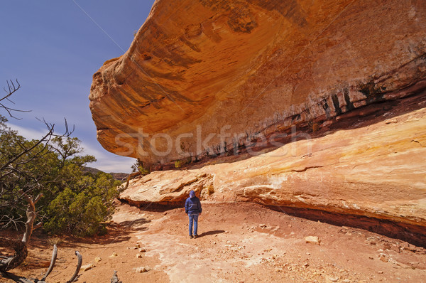 Hiker admiring the sandstone bluff Stock photo © wildnerdpix