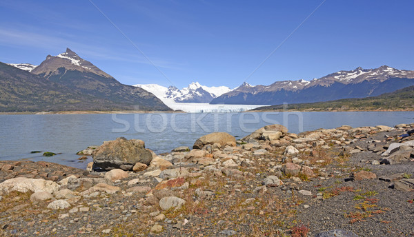 Glacial Plain, Lake, Glacier and Mountains Stock photo © wildnerdpix