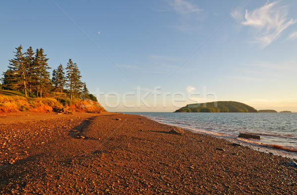 Gravel Beach at Sunset Stock photo © wildnerdpix