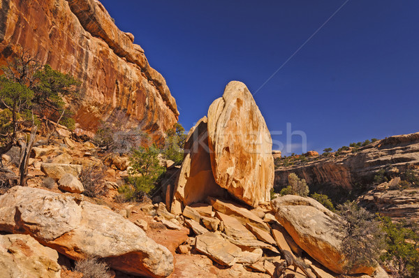 Unusual Red Rocks in the Desert Stock photo © wildnerdpix