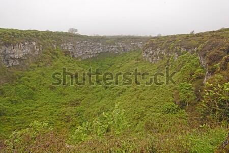 Sinkhole in a Cloud Forest Stock photo © wildnerdpix