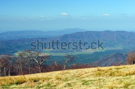 A mountain valley from above Stock photo © wildnerdpix