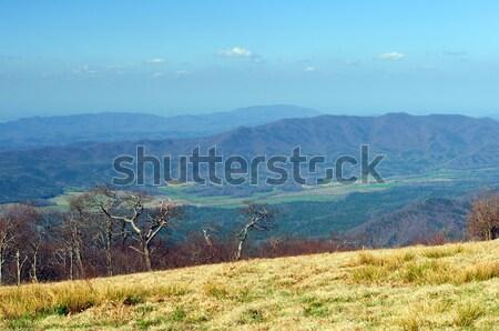 Montagne vallée au-dessus chauve smoky Photo stock © wildnerdpix