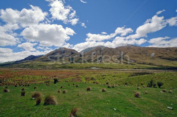 Grasslands in a Remote Mountain Valley Stock photo © wildnerdpix