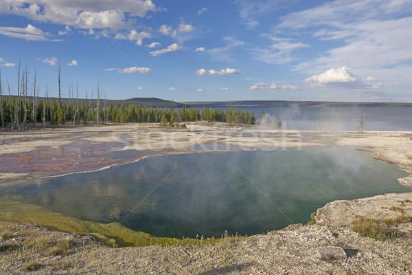 Thermisch bad afstandsbediening wildernis afgrond zwembad meer Stockfoto © wildnerdpix