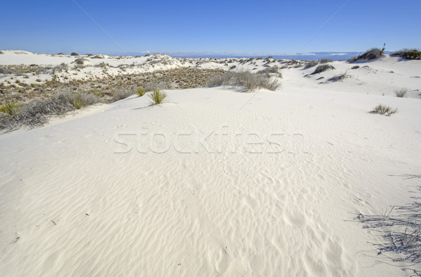 White Sands on Cold Sunny Morning Stock photo © wildnerdpix