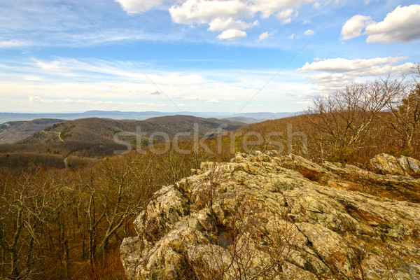Spectacular Viewpoint in the Eastern Mountains Stock photo © wildnerdpix