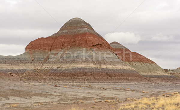 Eroded Butte in the Desert Stock photo © wildnerdpix