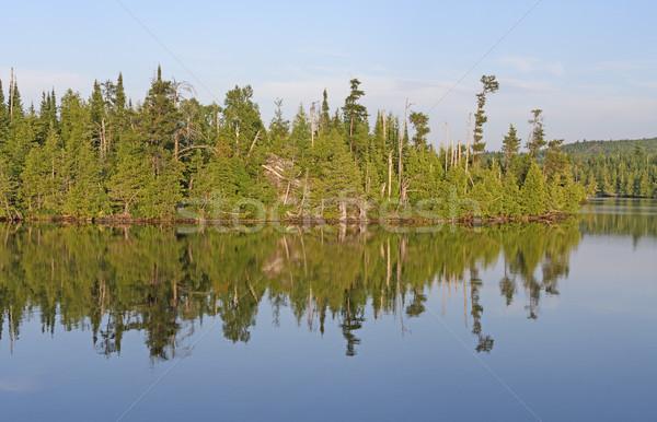 Evening Reflections on a Calm Lake Stock photo © wildnerdpix