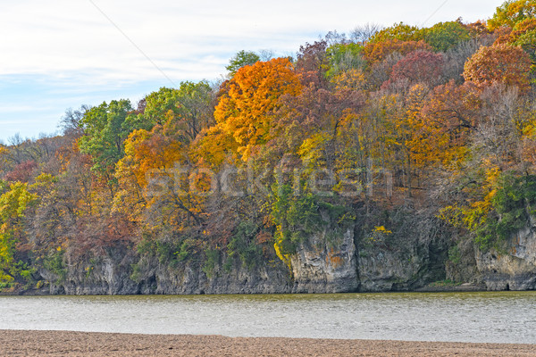 Fall Colors on a Cliff along a River Stock photo © wildnerdpix