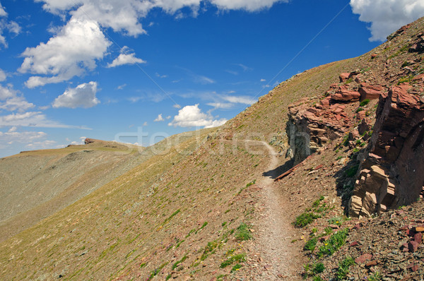 Trail across the alpine tundra Stock photo © wildnerdpix