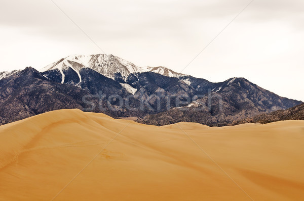 Sand Dunes  and Mountains in Winter Stock photo © wildnerdpix