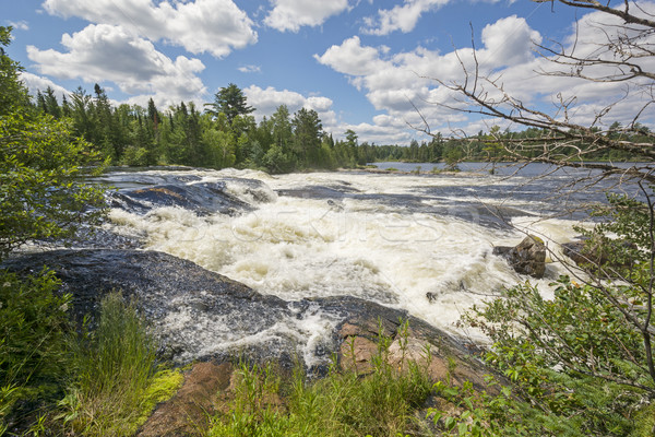 High Water on a Wilderness Cascade Stock photo © wildnerdpix