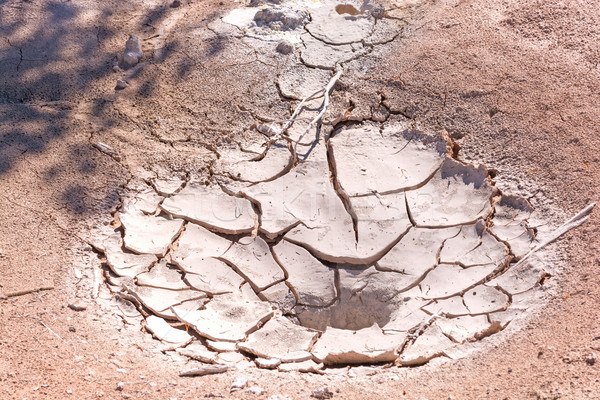 Dried up mud pot in a geothermal area Stock photo © wildnerdpix