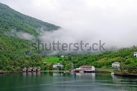 De manhã cedo dente norueguês aldeia manhã névoa Foto stock © wildnerdpix