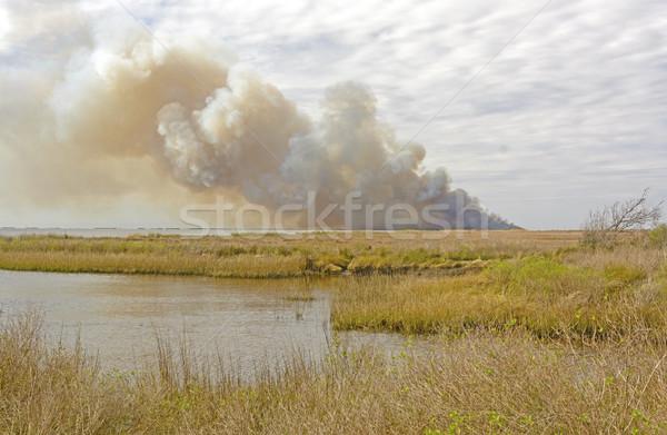 Wildfire живая природа воды природы пейзаж дым Сток-фото © wildnerdpix