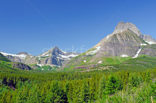 Jagged Peaks against a blue sky Stock photo © wildnerdpix
