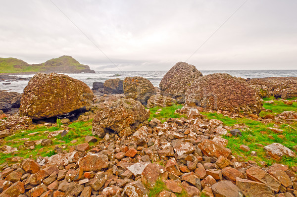 Lava Formations on the Irish Coast Stock photo © wildnerdpix