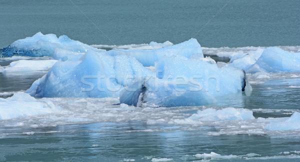 глубокий льда нижний ледник Аргентина воды Сток-фото © wildnerdpix