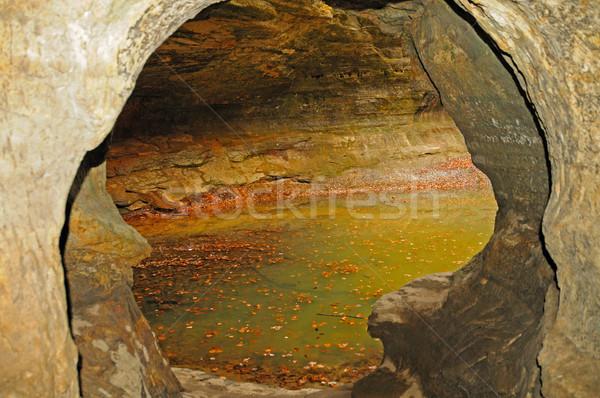 Couleurs d'automne calcaire grotte faible parc Illinois Photo stock © wildnerdpix