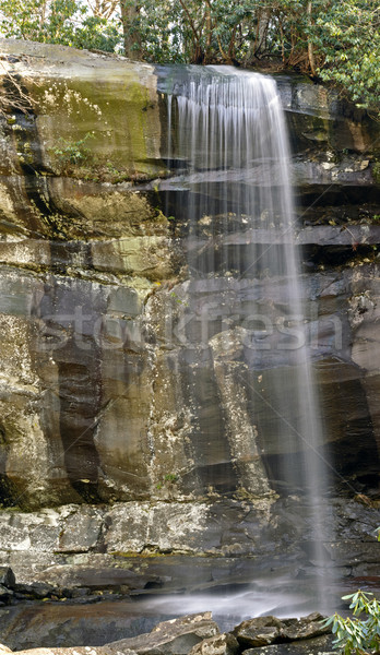 Remote Fall in the Mountains Stock photo © wildnerdpix