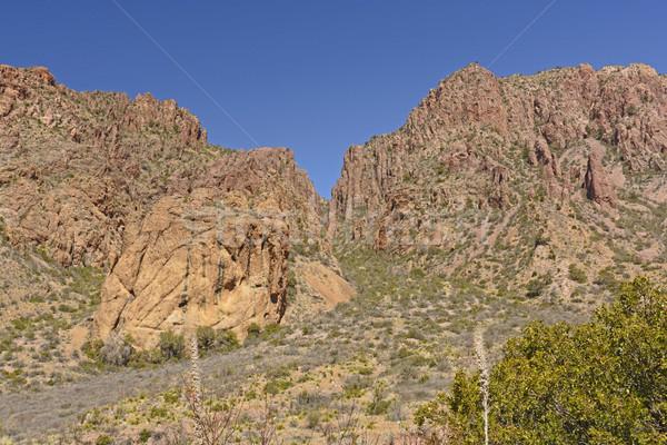 Dramatic Peaks in the Desert Stock photo © wildnerdpix