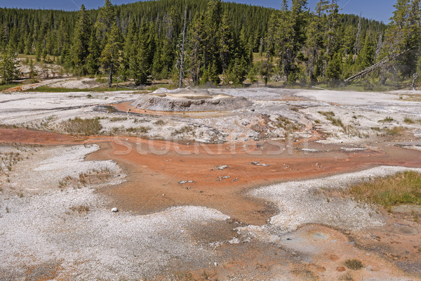 Geiser kegel park Wyoming natuur landschap Stockfoto © wildnerdpix