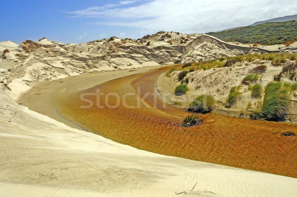 тихий потока небольшой ручей каменщик Сток-фото © wildnerdpix