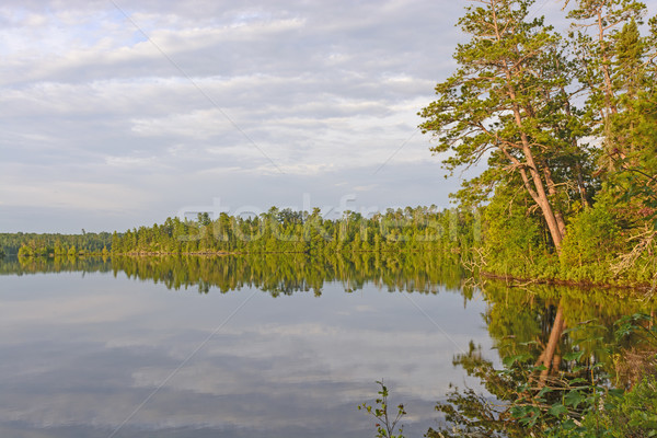 Early Morning Calm in Canoe Country Stock photo © wildnerdpix