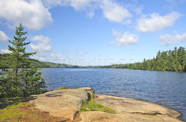 Morning View on a Wilderness Lake Stock photo © wildnerdpix