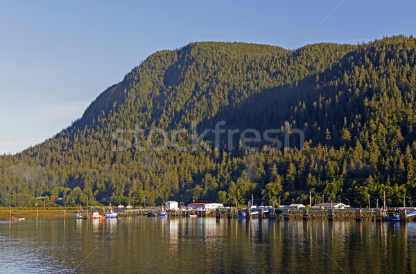 Coastal Town on the Inside Passage Stock photo © wildnerdpix