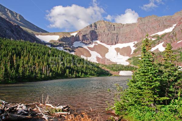 Alpine Lake in the Summer Stock photo © wildnerdpix