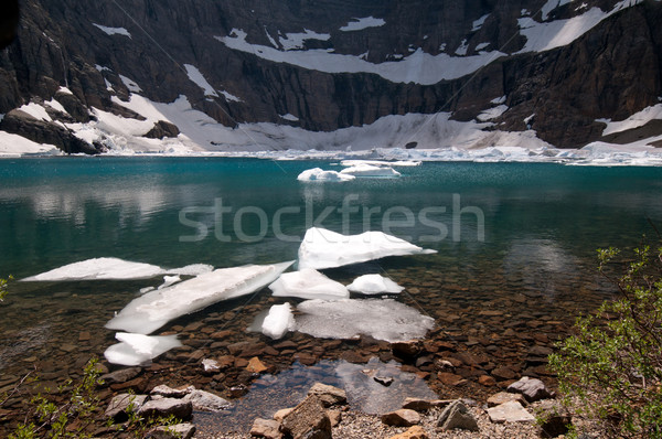 Iceberg lac Montana glace glacier eau Photo stock © wildnerdpix