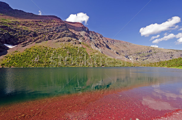 Alpine Lake in Montana Stock photo © wildnerdpix