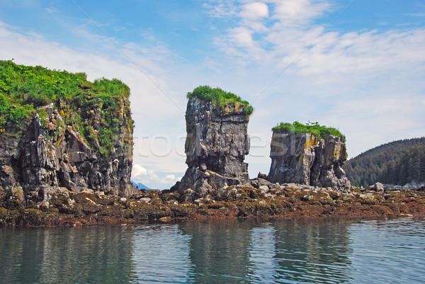 鳥 岩 鳥の巣 自然 海 ストックフォト © wildnerdpix