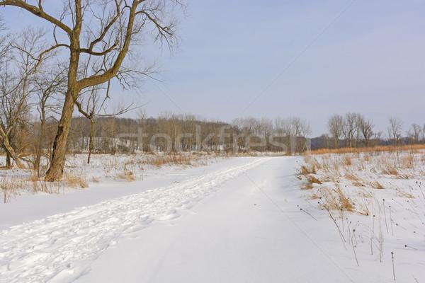 Sakin yol kış moren tepeler park Stok fotoğraf © wildnerdpix