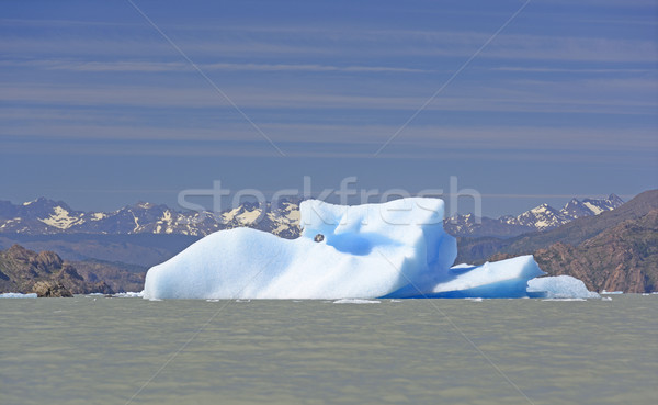Insolite iceberg lac gris parc Chili Photo stock © wildnerdpix