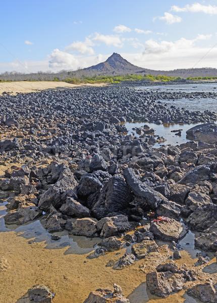 Vulkanisch afstandsbediening eiland wal draak Stockfoto © wildnerdpix